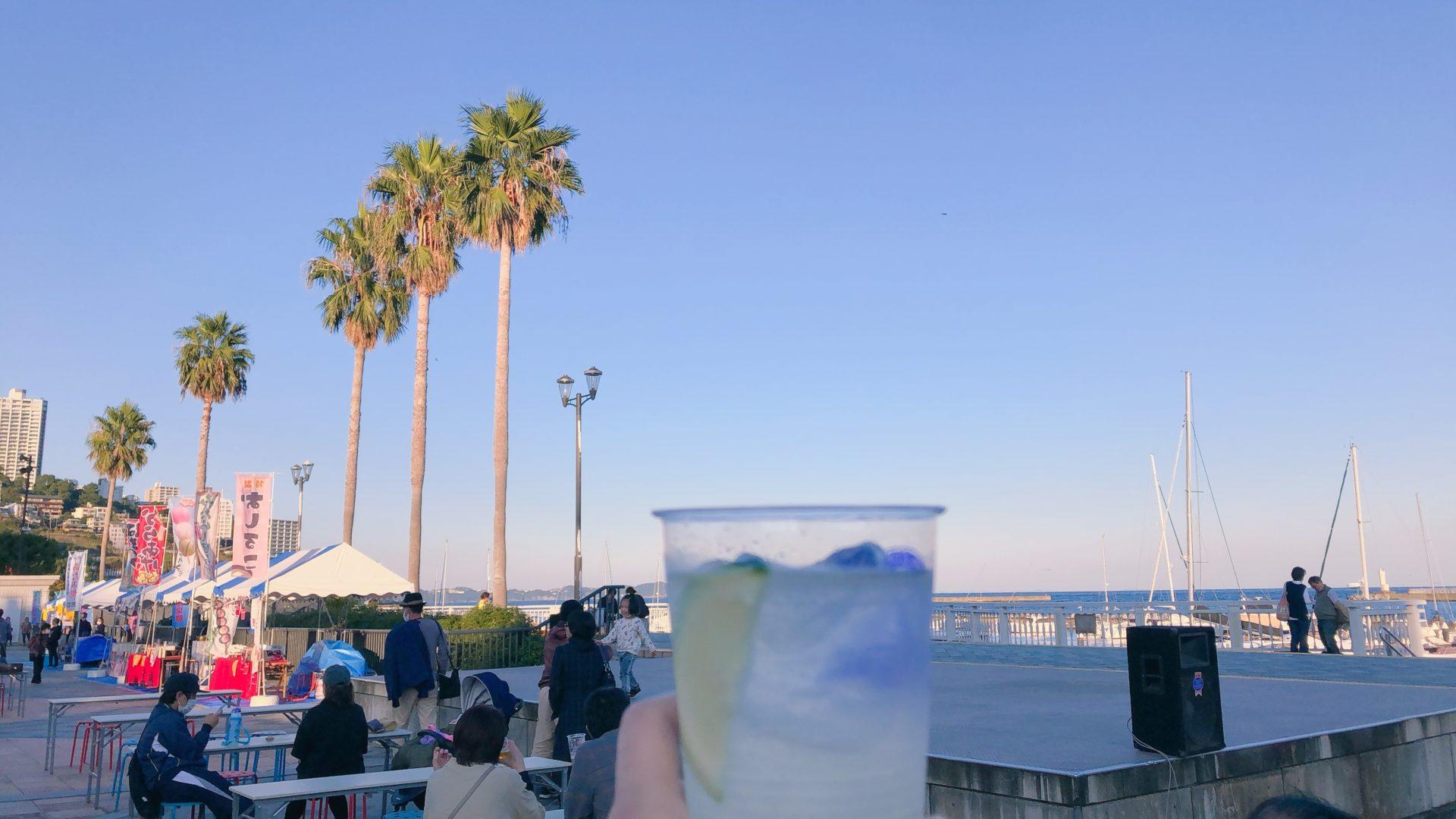 おさかなフェスティバル/熱海だいだいサワー